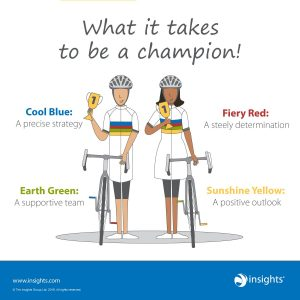 Insights Discovery colour champions