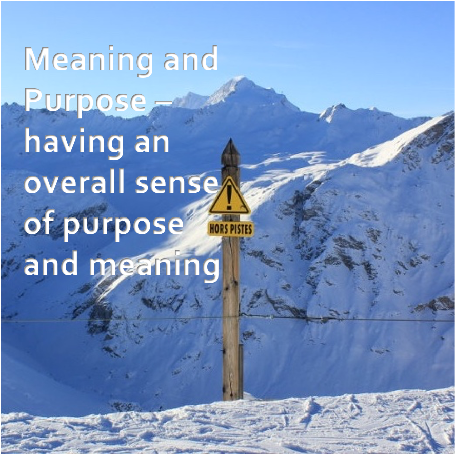 LifeForward Resilience Meaning and purpose